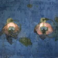 http://www.vincentprieur.com/files/gimgs/th-46_5_plongeurs-2011_v2.jpg